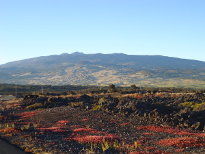View of Mauna Kea from the Saddle Road